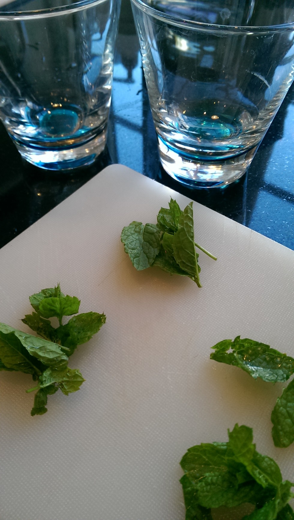 blomme-mojito-blog