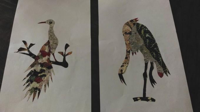 billeder-sommerfuglevinger-marrakech