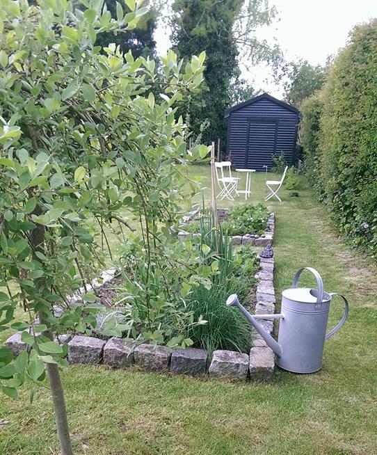 lille-urtehave