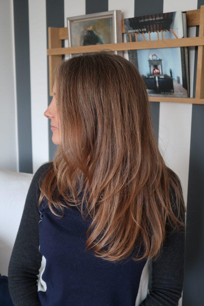 schampo brunt hår