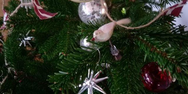 Glædelig Jul – og de perfekte gaver!