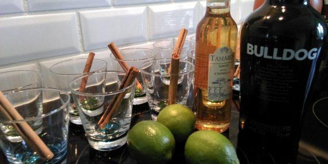 Julecocktail med gin, kanel og æble