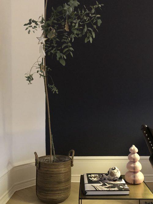 stor plante i stue
