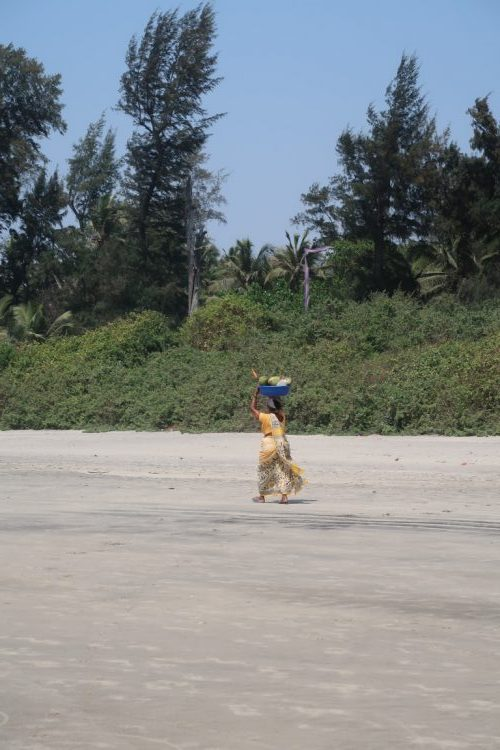 Goa kokossælger