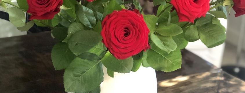 Røde roser til bryllupsdag