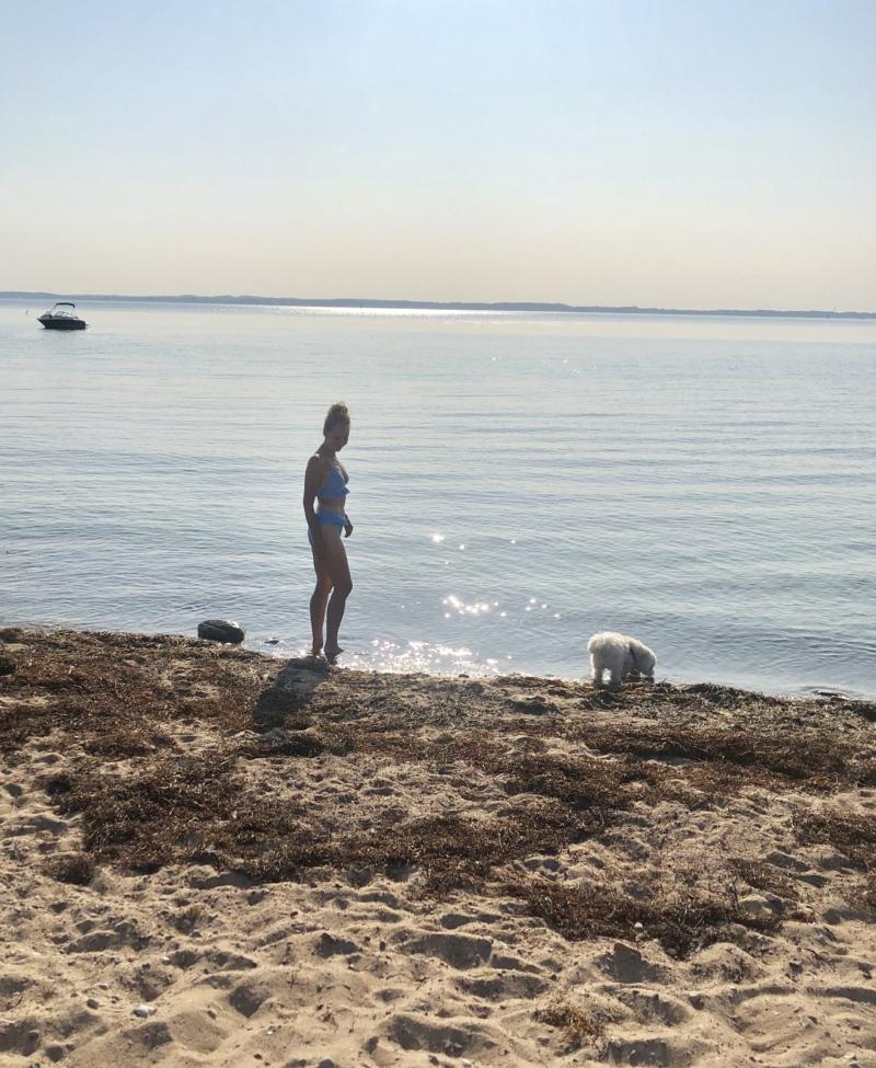 Stranden på Hven