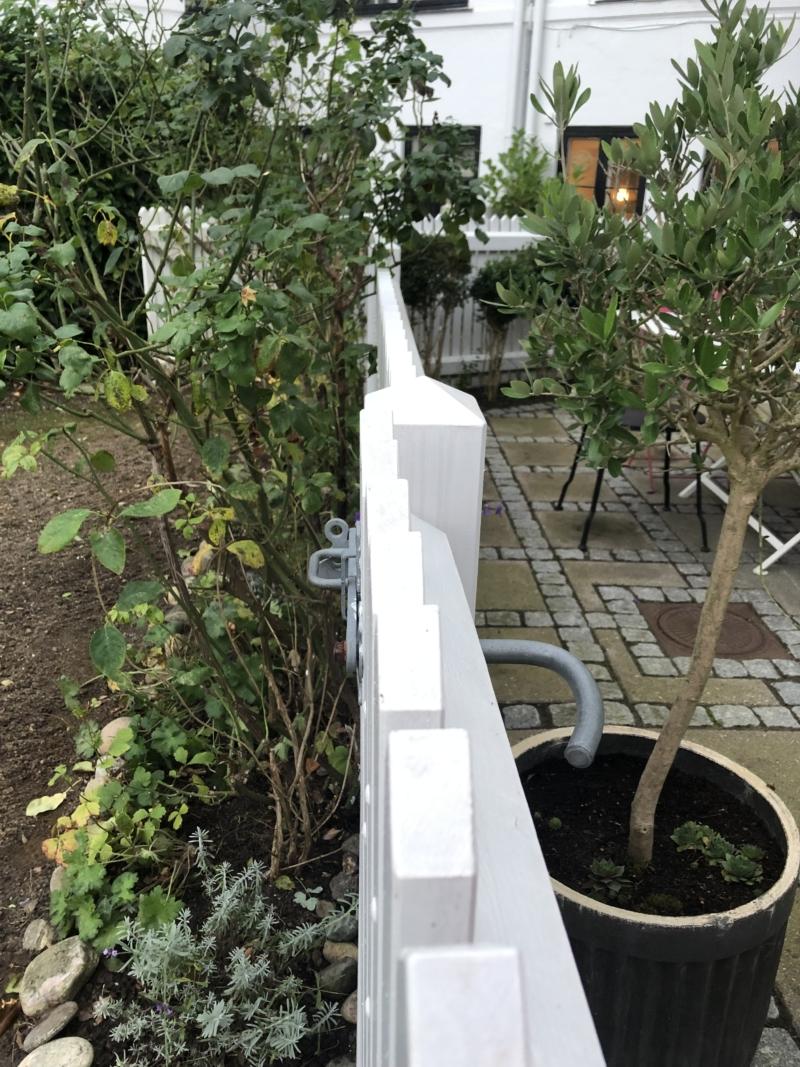 Efterårsklargøring af haven